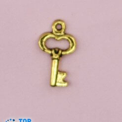Key steel Pendant Gold plated.